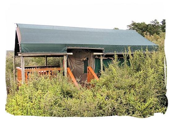 Safari tent - Addo Elephant Park accommodation