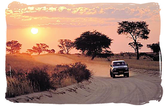 Enjoy daily game viewing with your own vehicle - Kgalagadi Transfrontier Park in the Kalahari, South Africa