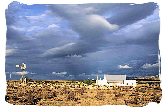 Sheep farm in the Land of great thirst with one of those sudden and heavy thunder showers brewing
