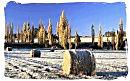 Winter landscape in the Orange Free State