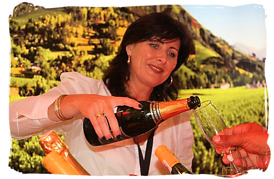 On a wine tasting tour you will find your love of wine embraced by genuine South African hospitality.