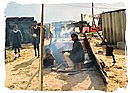 Squatter camp in South Africa