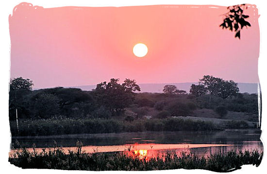 Early morning in the African bushveld