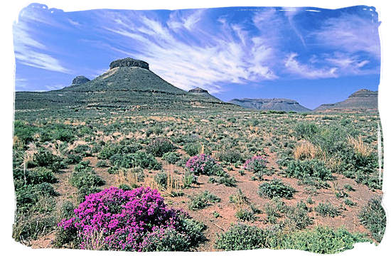 The unforgiving desert elements are clearly evident in this Karoo National Park landscape - The Great Karoo Climate, Karoo National Park South Africa
