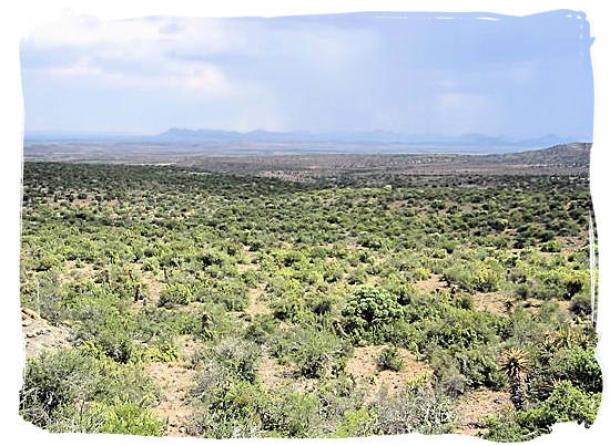 Great Karoo landscape and a much needed shower of rain in the distance - The Great Karoo Climate, Karoo National Park South Africa