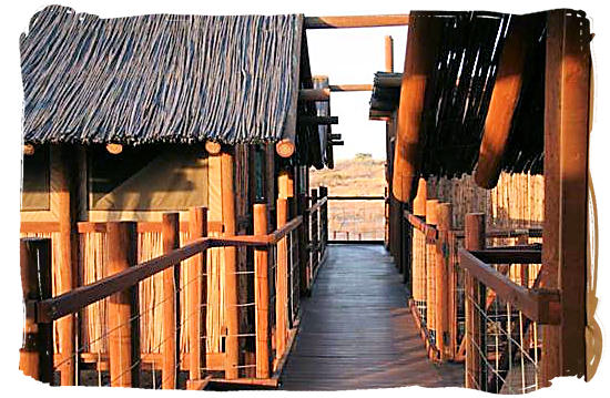 Wooden walkway connecting the accommodation units at the camp - Bitterpan Wilderness Camp, Kgalagadi Transfrontier Park