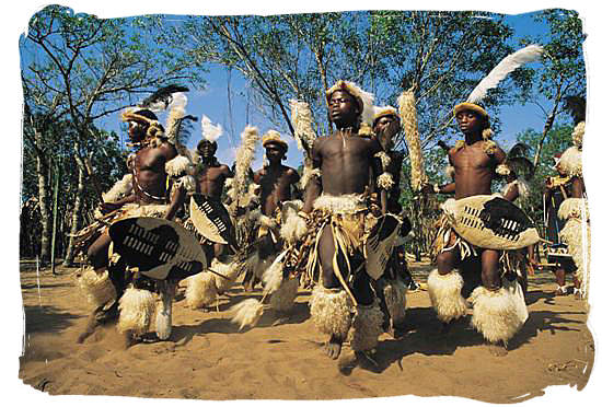 Young Zulus performing a traditional Zulu warrior dance at the Shakaland museum in Zulu